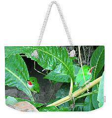 Jamaican Toadies Weekender Tote Bag by Carey Chen