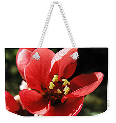 Weekender Tote Bag featuring the photograph Japanese Apple Flower by Vesna Martinjak