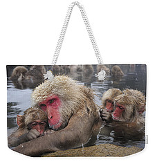 Weekender Tote Bag featuring the photograph Japanese Macaque Grooming Mother by Thomas Marent
