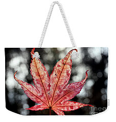 Japanese Maple Leaf - 2 Weekender Tote Bag