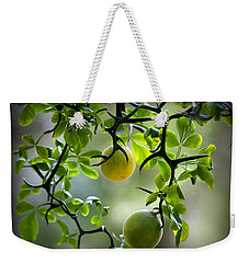 Japanese Orange Tree Weekender Tote Bag