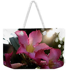 Weekender Tote Bag featuring the photograph Jardin Du Matin by Miguel Winterpacht