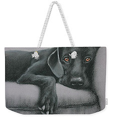 Weekender Tote Bag featuring the drawing Jasper by Cynthia House