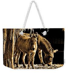 Jenny N Jack Weekender Tote Bag by Robert Geary