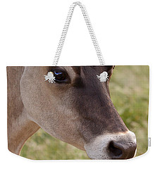 Jersey Cow Portrait Weekender Tote Bag