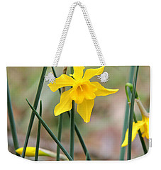 Weekender Tote Bag featuring the photograph Johnny-jump-up by Kim Pate