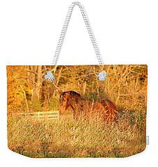 Weekender Tote Bag featuring the photograph Jonathan by Carol Lynn Coronios