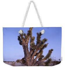 Solitude Of The Joshua Tree Weekender Tote Bag by Shaun Higson