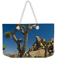 California Joshua Trees In Joshua Tree National Park By The Mojave Desert Weekender Tote Bag