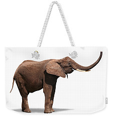Joyful Elephant Isolated On White Weekender Tote Bag