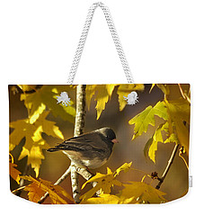 Weekender Tote Bag featuring the photograph Junco In Morning Light by Nava Thompson