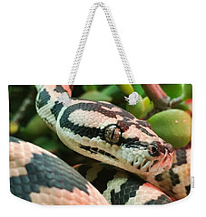 Jungle Python Weekender Tote Bag by Kelly Jade King
