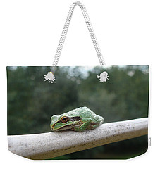 Weekender Tote Bag featuring the photograph Just Chillin' by Cheryl Hoyle