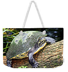 Weekender Tote Bag featuring the photograph Just Chilling by Debra Forand