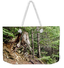 Just Hanging On Old Growth Forest Stump Weekender Tote Bag by Roxy Hurtubise