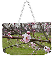 Just Peachy 3 Weekender Tote Bag