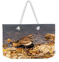 Kildeer On The Rocks Weekender Tote Bag by Robert Frederick