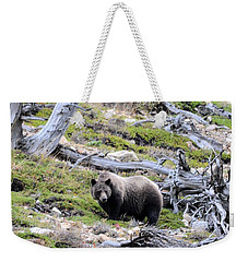 King Of The Mountain Weekender Tote Bag