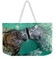 Kissing Manatees Near Harbour Island Weekender Tote Bag