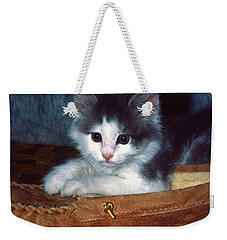 Weekender Tote Bag featuring the photograph Kitten In Slipper by Sally Weigand
