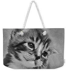 Kitten Just For You Weekender Tote Bag by Terri Waters