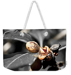 Weekender Tote Bag featuring the photograph Knew Seeds Of Complentation by Miroslava Jurcik