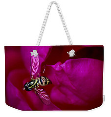 Weekender Tote Bag featuring the photograph Knockout Rose Investigation by Ben Shields