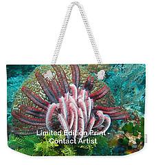 Komodo Island 6 Weekender Tote Bag by David Beebe