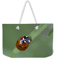 Lady Bug Close Up Weekender Tote Bag