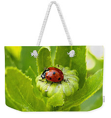 Lady Bug In The Garden Weekender Tote Bag by Amy McDaniel