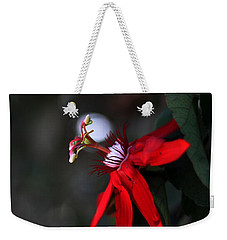 Weekender Tote Bag featuring the photograph Lady Margaret - Passionflower  by Ramabhadran Thirupattur