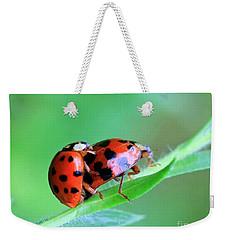Ladybug And Gentlemanbug Weekender Tote Bag
