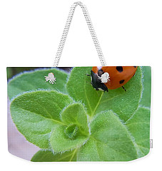 Weekender Tote Bag featuring the photograph Ladybug And Oregano by Robert ONeil