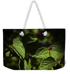 Weekender Tote Bag featuring the photograph Ladybug by Bradley R Youngberg