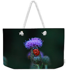Ladybug Weekender Tote Bag by Jeff Swan