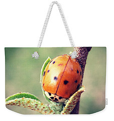 Weekender Tote Bag featuring the photograph Ladybug  by Kerri Farley