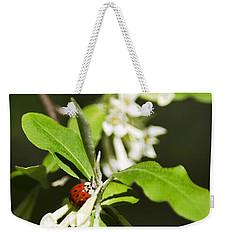 Ladybug And Flowers Weekender Tote Bag
