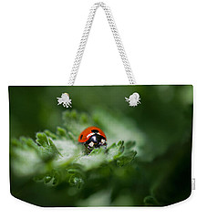 Ladybug On The Move Weekender Tote Bag by Jordan Blackstone