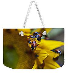 Ladybugs Close Up Weekender Tote Bag