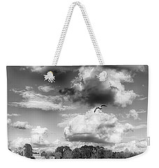Weekender Tote Bag featuring the photograph Lake De Soto by Howard Salmon