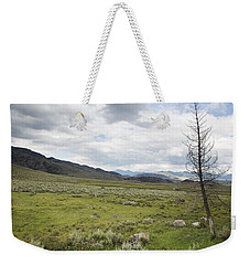 Weekender Tote Bag featuring the photograph Lamar Valley No. 1 by Belinda Greb