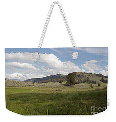 Weekender Tote Bag featuring the photograph Lamar Valley No. 2 by Belinda Greb