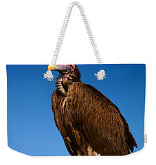 Lappetfaced Vulture Against Blue Sky Weekender Tote Bag by Johan Swanepoel