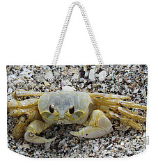 Weekender Tote Bag featuring the photograph Ghost Crab by Cynthia Guinn