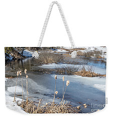 Last Days Of Winter Weekender Tote Bag by Jola Martysz
