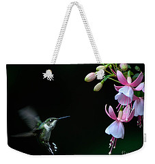Last Light Weekender Tote Bag by Amy Porter