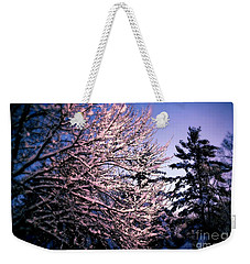 Last Peek Of Winter Sun Weekender Tote Bag