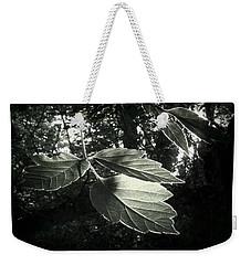 Last Rays II Weekender Tote Bag