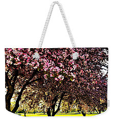 Late Afternoon At Lake Park Weekender Tote Bag