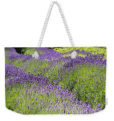 Weekender Tote Bag featuring the photograph Lavender Day by Kathy Bassett